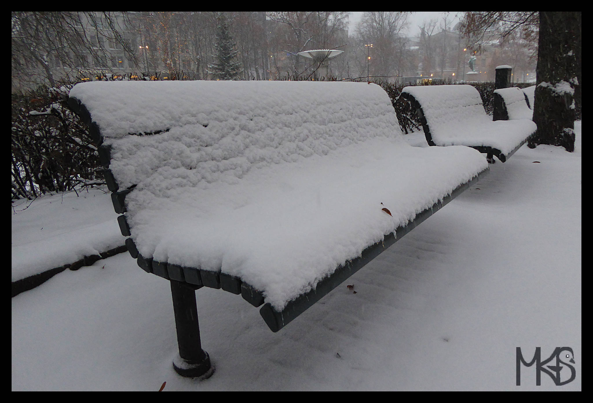 Benches covered by snow in Oslo